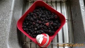 blackberry jam1